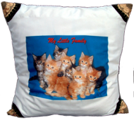 Photo Cushion $22.99
