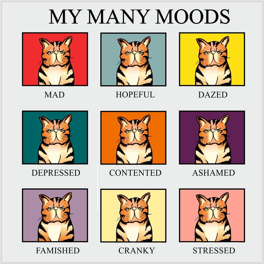 Moods Pictures to Pin on Pinterest - PinsDaddy